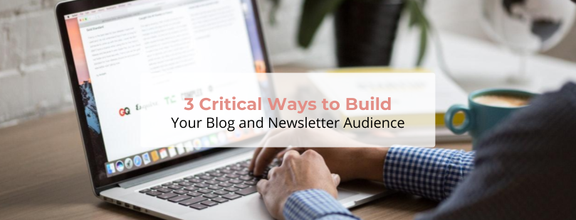 3 Critical Ways to Build Your Blog and Newsletter Audience