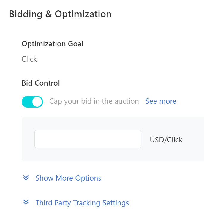 TikTok ads bidding